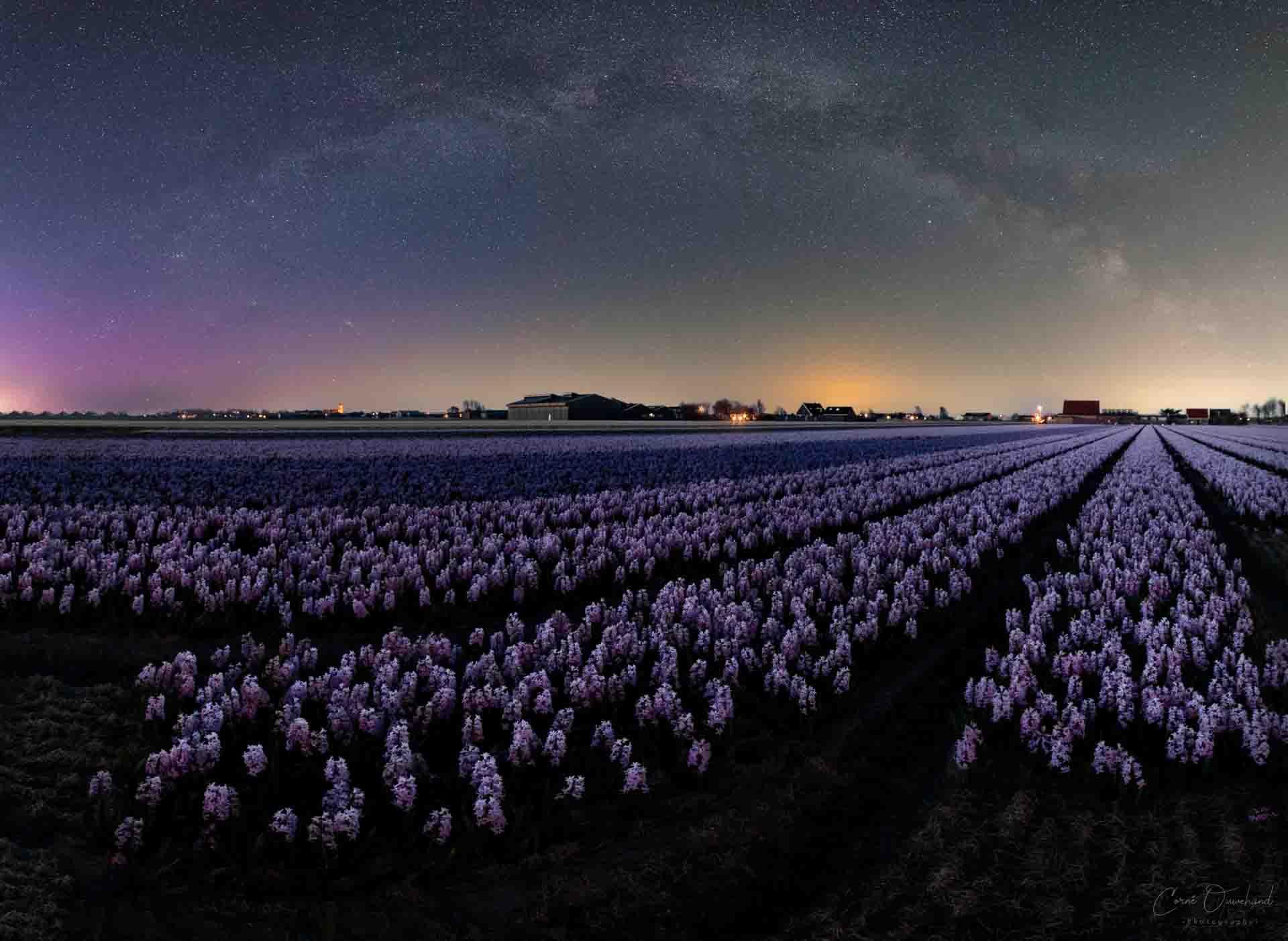 Noorderlicht fotograferen Nederland